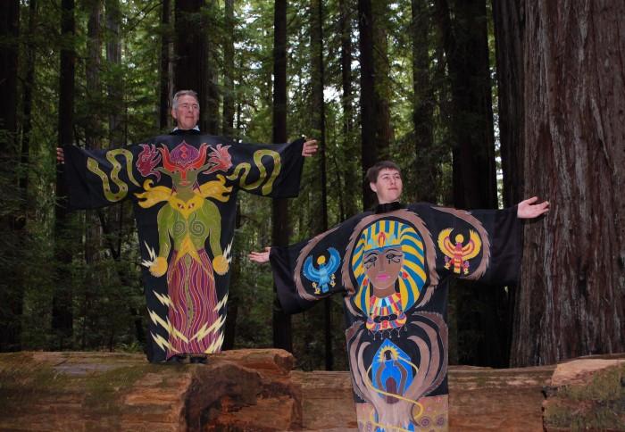 Redwoods 9
